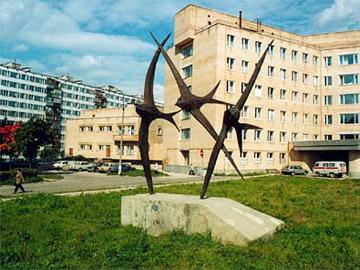 город черноголовка фото